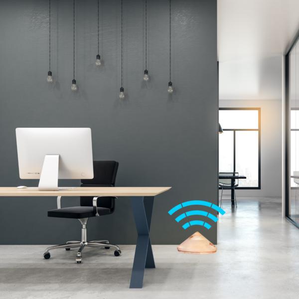 RayGuard® Home Pino Cembro protezione da elettrosmog ufficio e casa